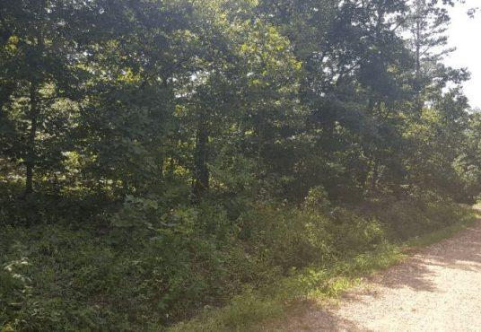 Land Parcel Deal. 0.08 Acres - Siloam Springs, Arkansas- Explore Maps and Land Parcel Deals