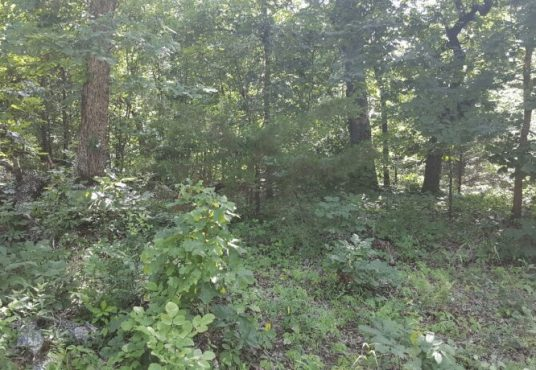 Land Parcel Deal. 0.08 Acres - Siloam Springs, Arkansas- Explore Maps and Land Parcel Deals