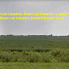 Subdivide Acreage of Land- Split a Tract of Land and Subdivide Acreage