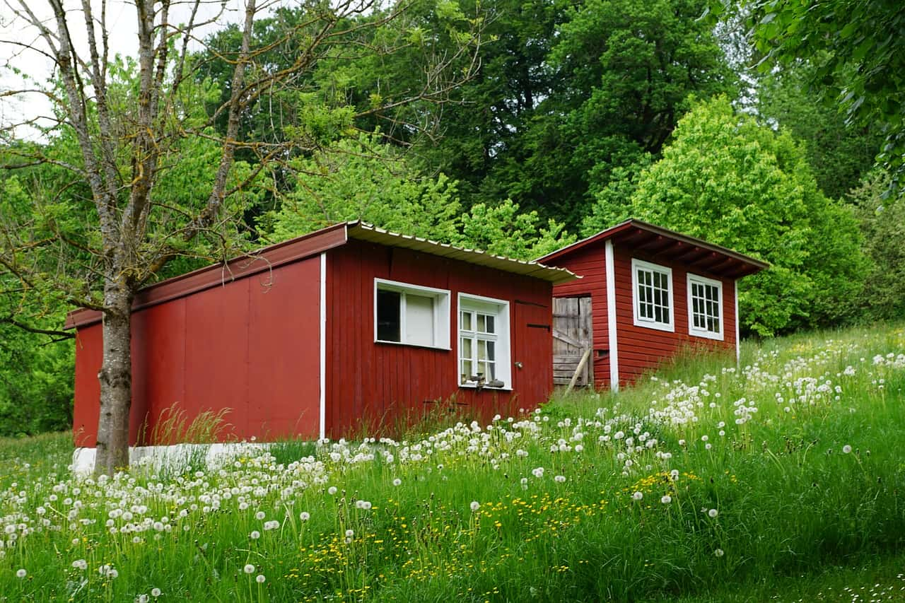 Cheap land for tiny house