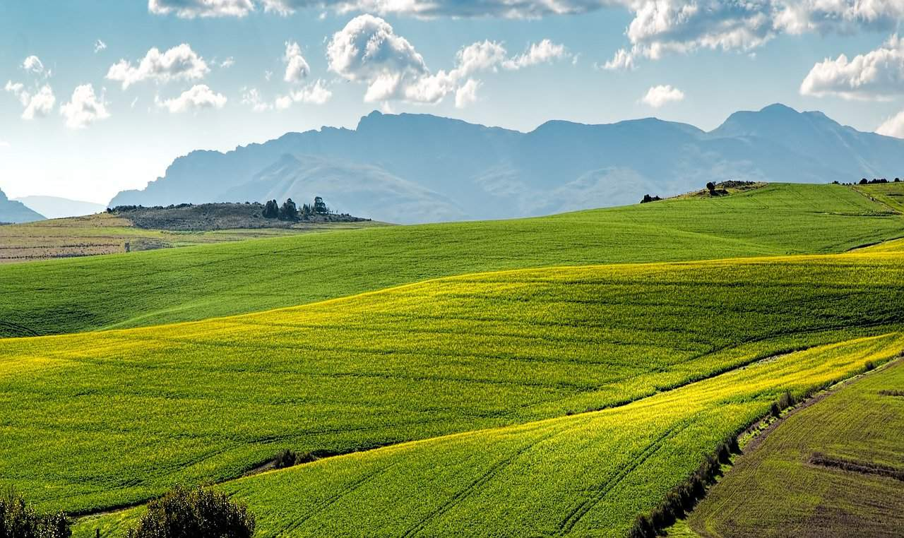 Is agricultural land a good investment?