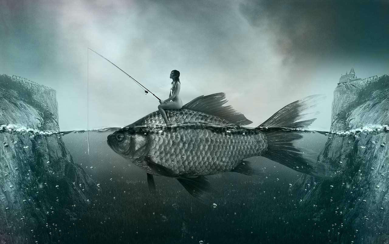 What first time fishing land buyers need to know?